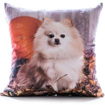 Gouchee Design Pomeranian Cushion