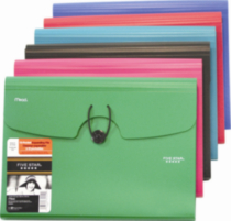 Five Star® Poly Expanding file 13 Pockets