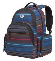 Swiss Alps Rainproof Backpack
