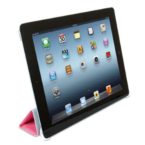 iSound Honeycomb Case for iPad, Pink