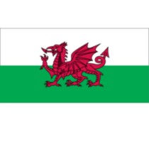 Flag Wales 72""