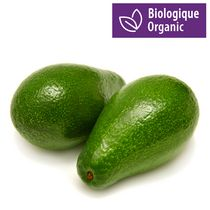 Avocado, Organic