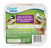 Great Value Berry and Nut Suet Wild Bird Food