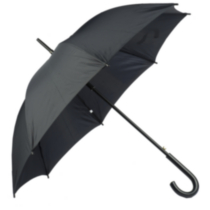 Weather Stationstick Umbrella