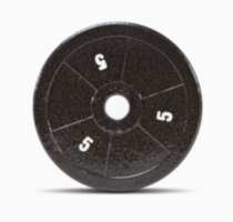 Marcy 5lb standard plate