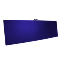 Apple Athletic Single Panel Exercise Mat Blue