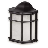 Globe Electric Outdoor Wall Light