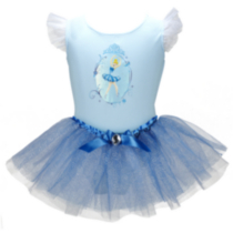 Disney Princess Cinderella Tutu & Leotard