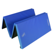 Apple Athletic 4 Panel Exercise Mat Blue