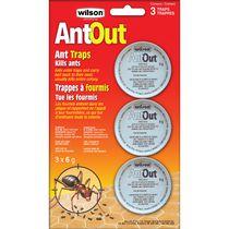 Wilson AntOut Ant Traps