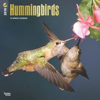 2018 Hummingbirds Calendar