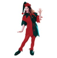 Elf Adult Costume