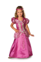 Fairy Tale Princess Child Costume