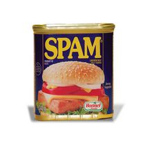 SPAM Fully Cooked Luncheon Meat