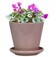 "hometrends 5"" Candy Pot Taper Pink Ceramic Planter"