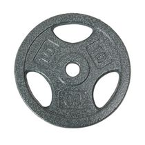 GoZone 10LB Grip Weight Plate, Silver