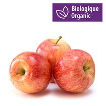 Apple, Organic Gala