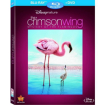 Disneynature: The Crimson Wing - The Mystery Of The Flamingo (Blu-ray + DVD)