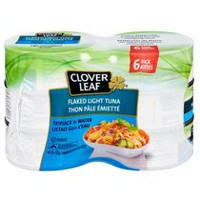 CLOVER LEAF® Flaked Light Tuna Skipjack in Water