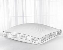 memory fibre pillow