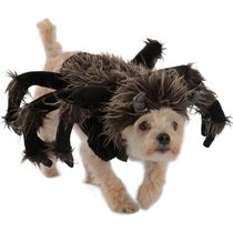 Puppy Love Bride Pet Dog Costume White Wedding Dress Veil Female Halloween XS-LG