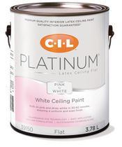 buy interior paint online walmart canada