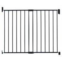 Push To Close Extending Metal Gate