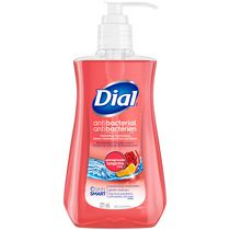 Dial Antibacterial Liquid Hand Soap Pomegranate And Tangerine 221,mL