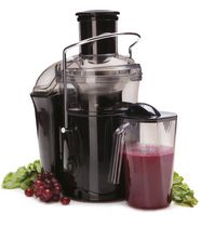Salton Vitapro Low Speed Juicer Reviews : Buy Blenders & Juicers Online Walmart Canada