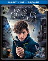 Fantastic Beasts And Where To Find Them (Blu-ray + DVD + Digital HD) (Bilingual)