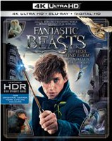 Fantastic Beasts And Where To Find Them (4K Ultra HD + Blu-ray + Digital HD) (Bilingual)