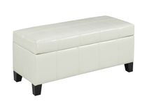 Brassex Ottoman with Storage, White