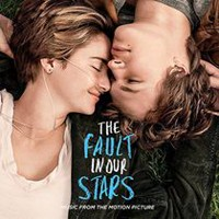 Various Artists - The Fault In Our Stars Soundtrack (Vinyl) (2LP / Digital Download)
