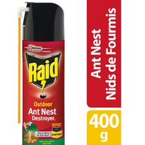 Raid Outdoor Ant Nest Destroyer Insect Killer Spray, 400g