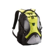 Coleman® 2-in-1 Day Pack