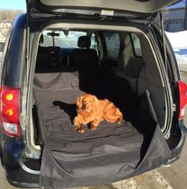 Small Vehicle Cargo Liner