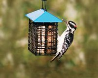 Stoke's Select Double Suet Feeder with Weather Guard