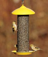 Stoke's Select Finch Screen Feeder